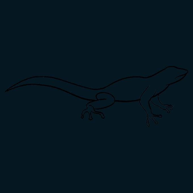 How to Draw Lizard: Step 8