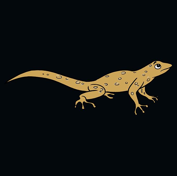 How to Draw Lizard: Step 10