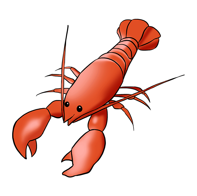 How to Draw Lobster: Step 10