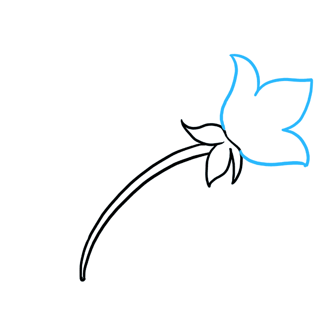 How to Draw Mother's Day Flower: Step 3