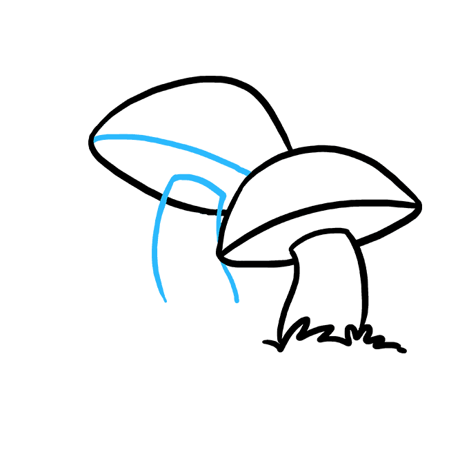 How to Draw Mushroom: Step 5
