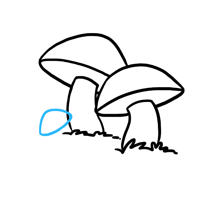 How to Draw Mushroom: Step 7