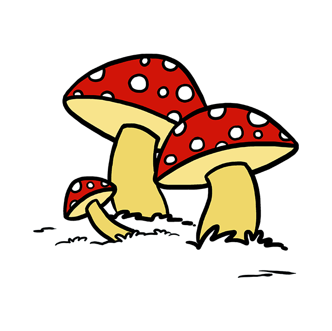 How to Draw Mushroom: Step 10