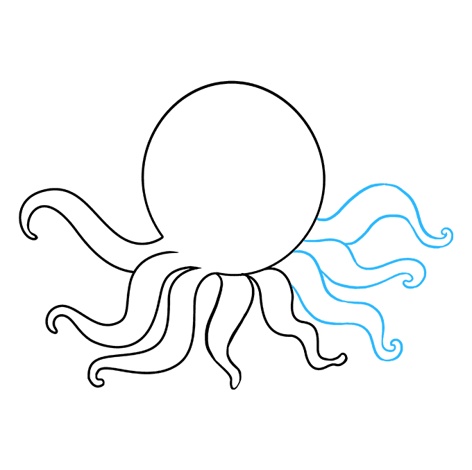 How to Draw Octopus: Step 6