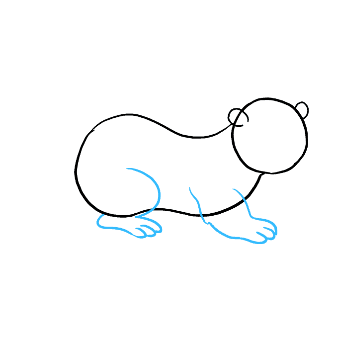 How to Draw Otter: Step 4