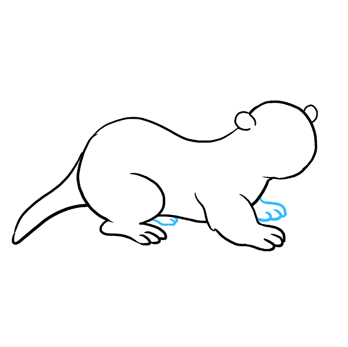 How to Draw Otter: Step 7