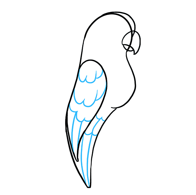 How to Draw Parrot: Step 6