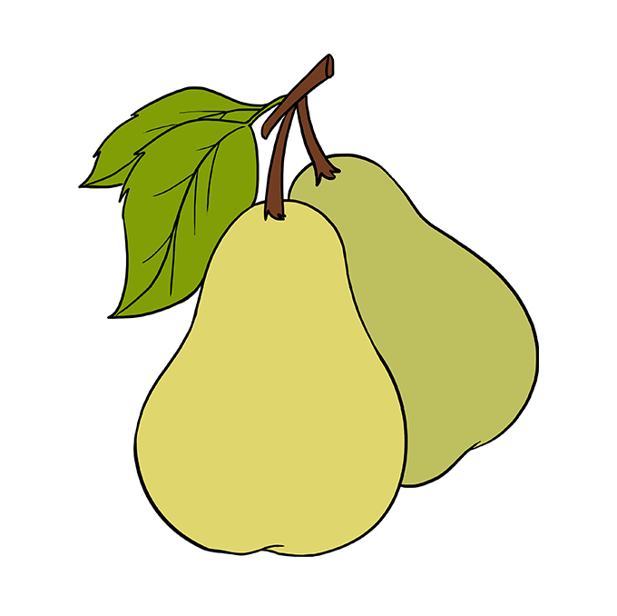 How to Draw Pears: Step 10