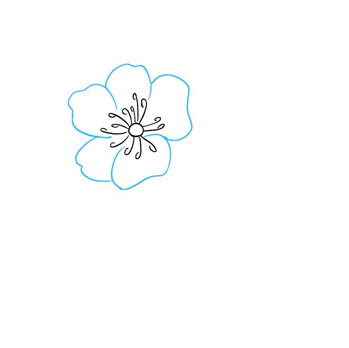 How to Draw Peony: Step 3