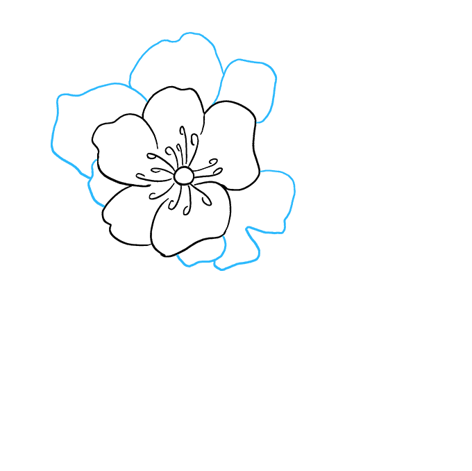 How to Draw Peony: Step 4