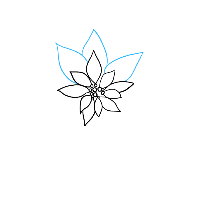 How to Draw Poinsettia: Step 4