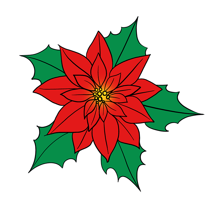 How to Draw Poinsettia Step 10