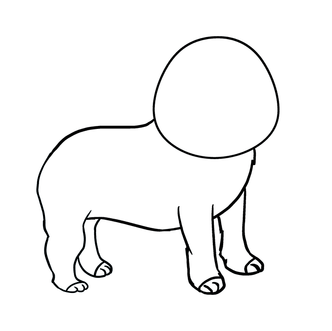 How to Draw Pug: Step 5