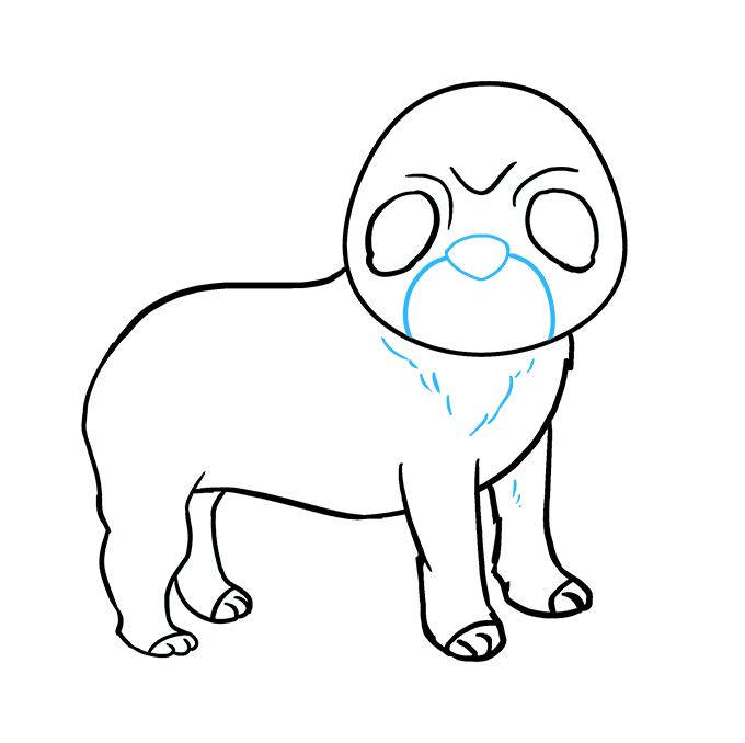 How to Draw Pug: Step 7