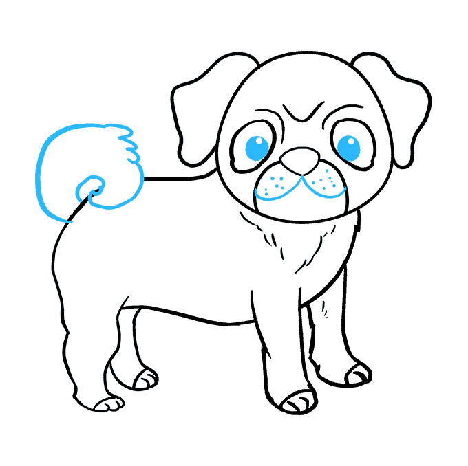 How to Draw Pug: Step 9