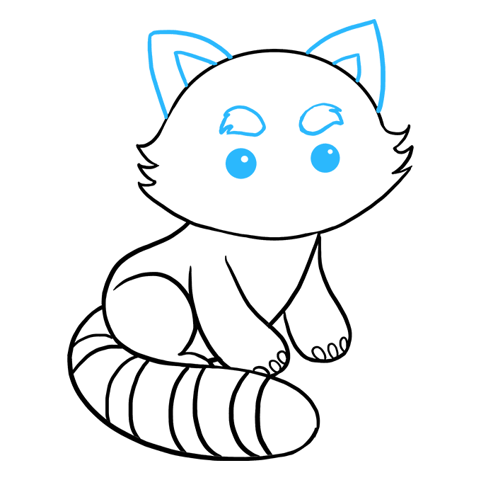 How to Draw Red Panda: Step 8