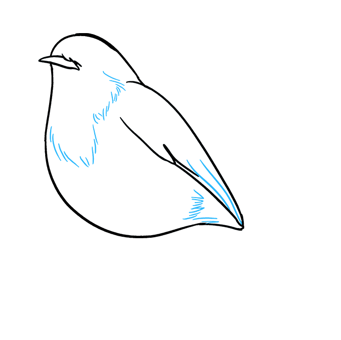 How to Draw Robin: Step 6