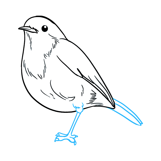 How to Draw Robin: Step 8