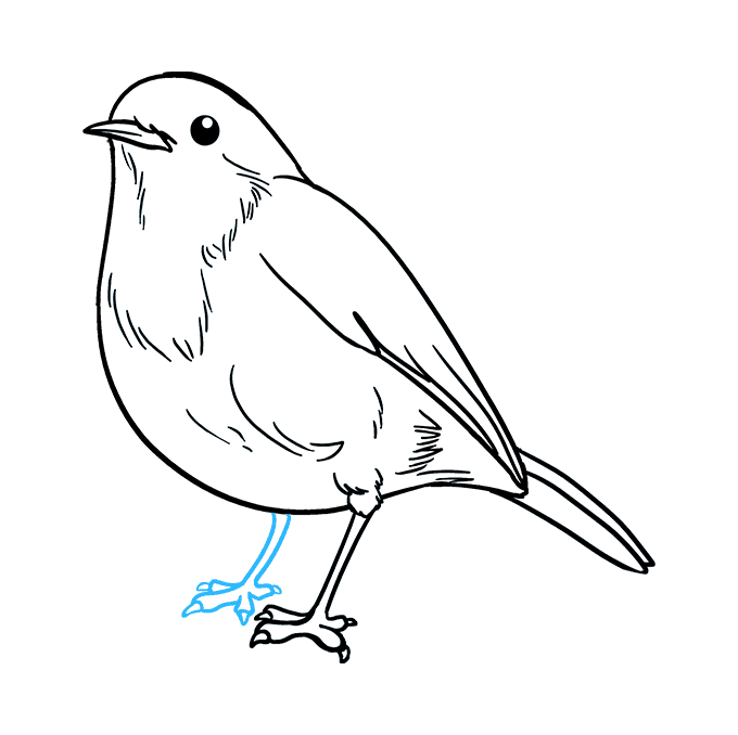How to Draw Robin: Step 9