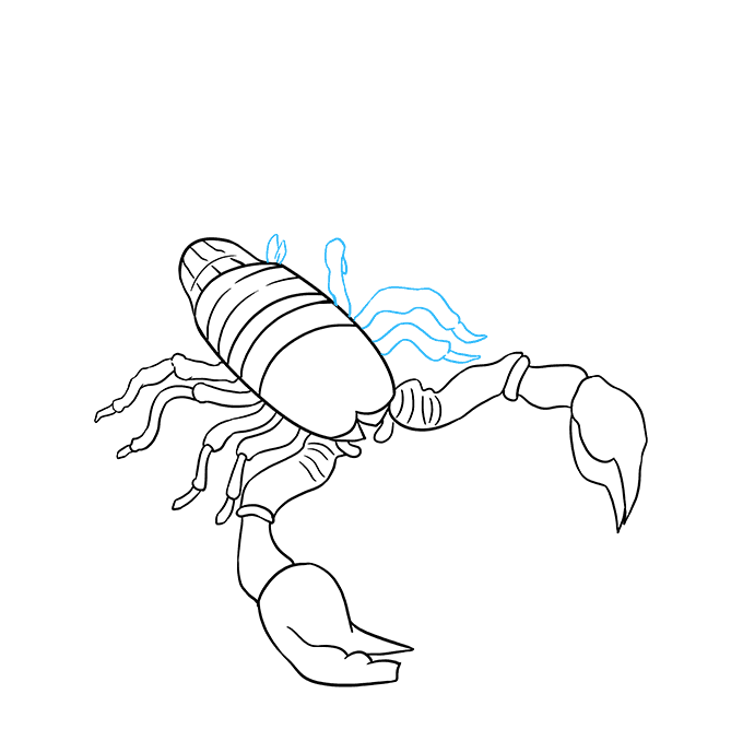 How to Draw Scorpion: Step 8