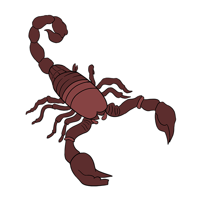 How to Draw Scorpion: Step 10