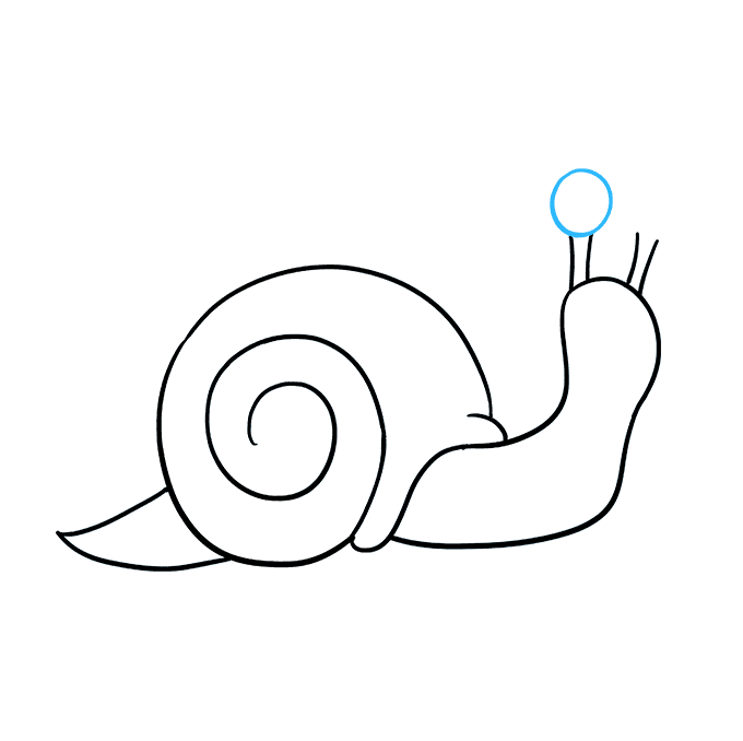 How To Draw A Snail Really Easy