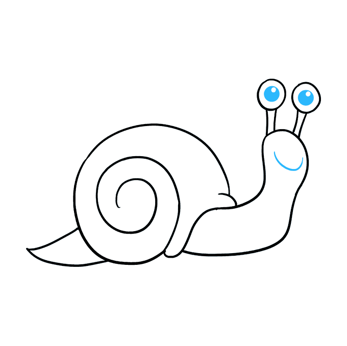 How to Draw a Snail Step 09
