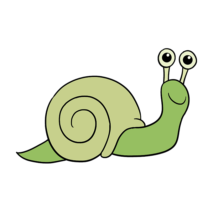 How to Draw a Snail Step 10