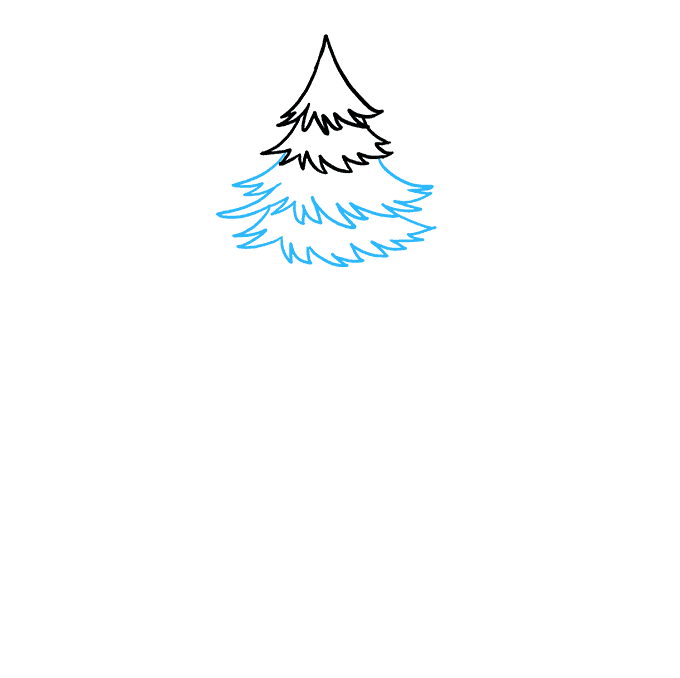 How to Draw Spruce: Step 3