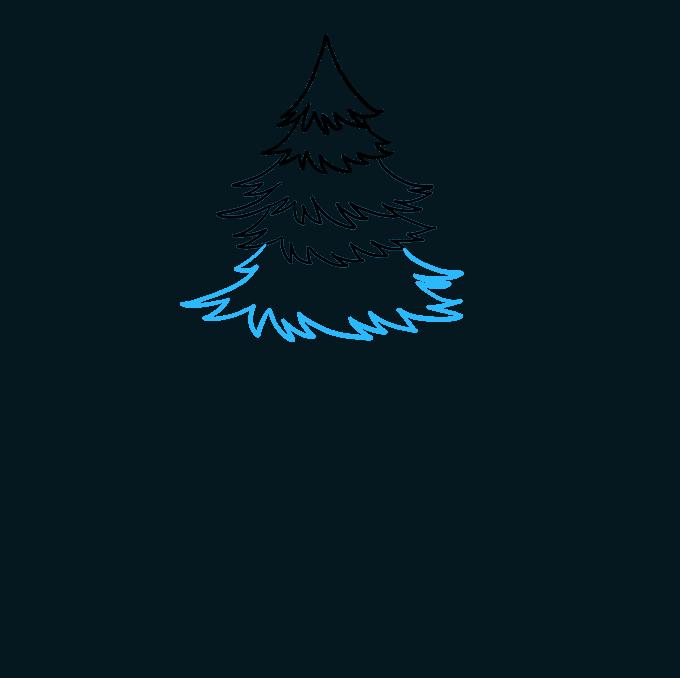 How to Draw Spruce Step 04