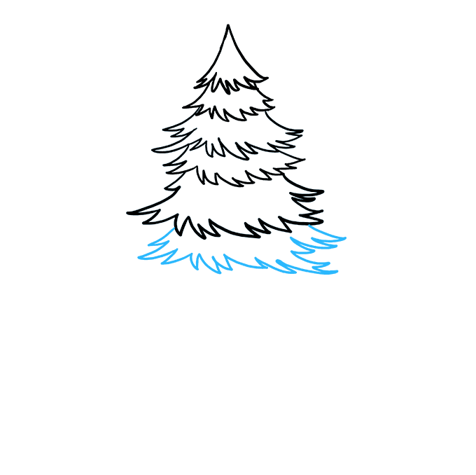 How to Draw Spruce: Step 5