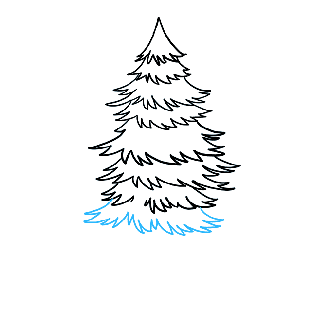 How to Draw Spruce: Step 7