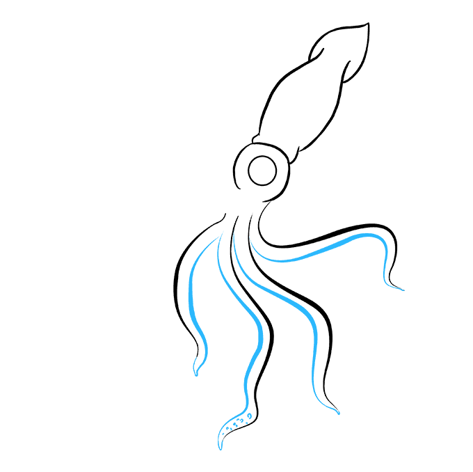How to Draw Squid: Step 6