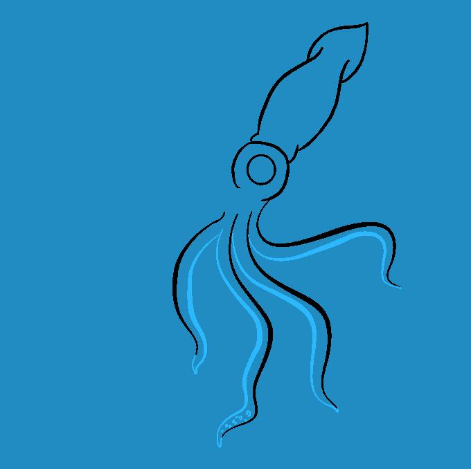 Cómo dibujar calamar: paso 6