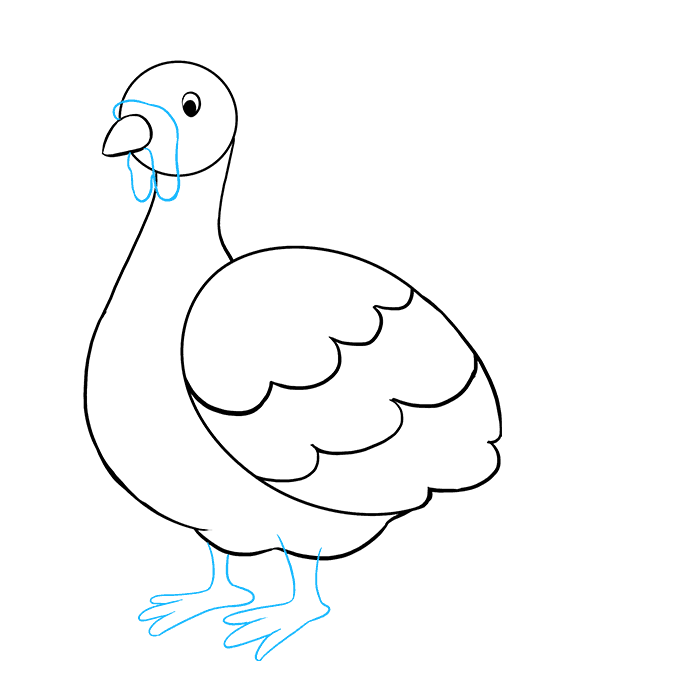 How to Draw a Turkey Step 06