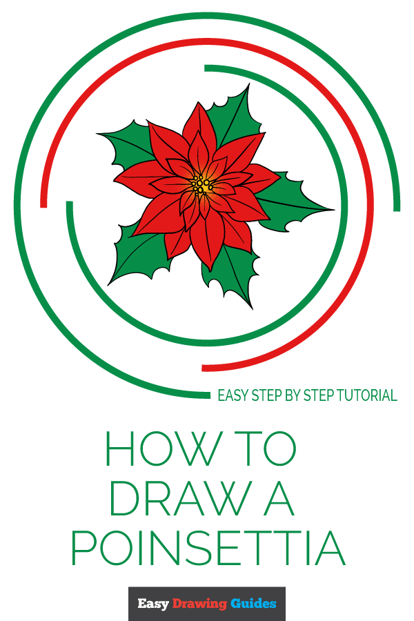How to Draw a Poinsettia: Pinterest Image