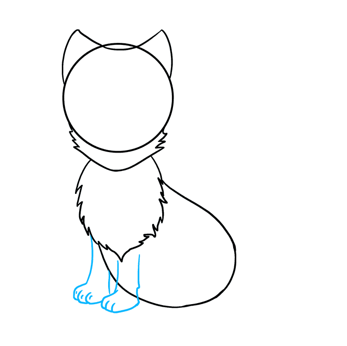 How to Draw Arctic Fox: Step 5