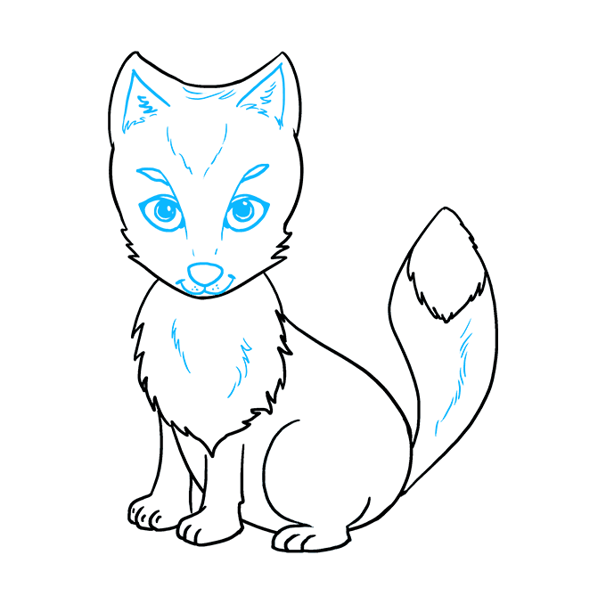 How to Draw Arctic Fox: Step 9