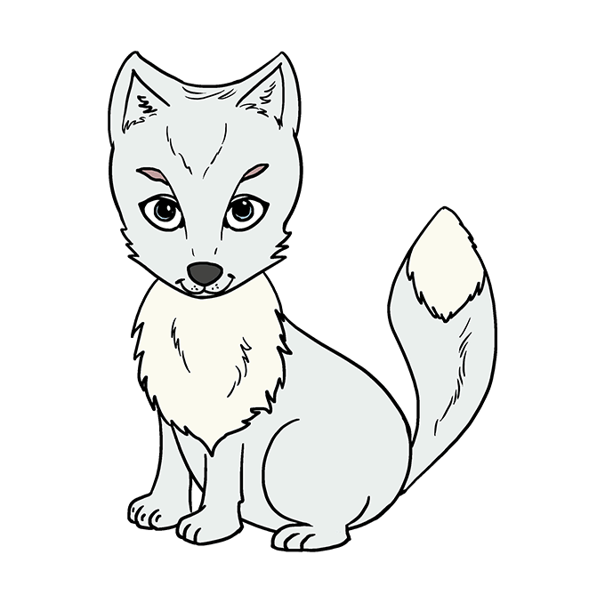 How to Draw Arctic Fox: Step 10