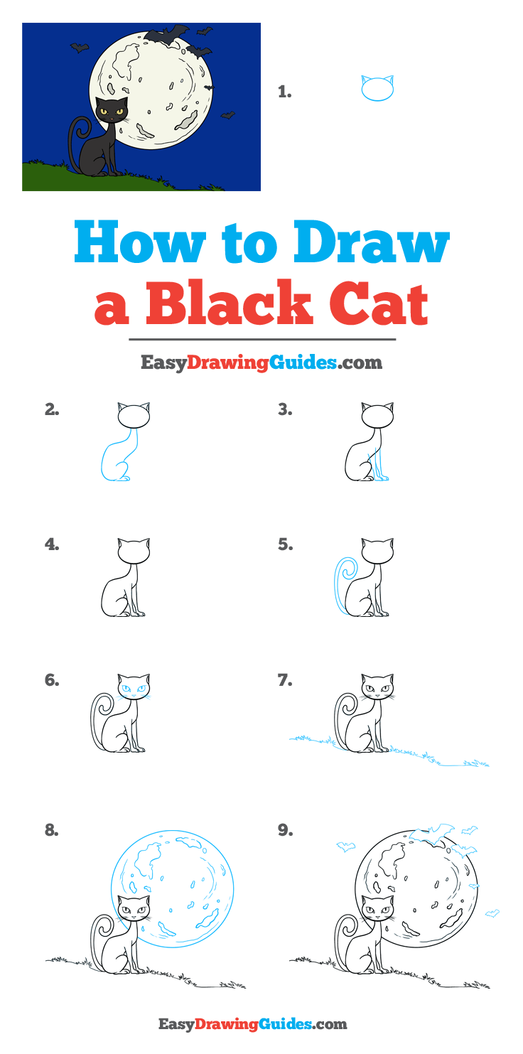 How to Draw a Black Cat Step by Step Tutorial Image