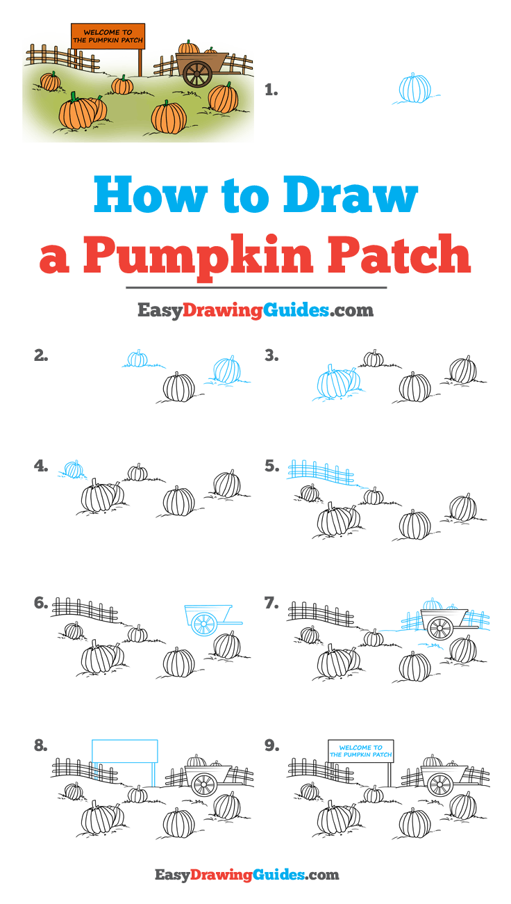 How to Draw a Pumpkin Patch Step by Step Image Tutorial