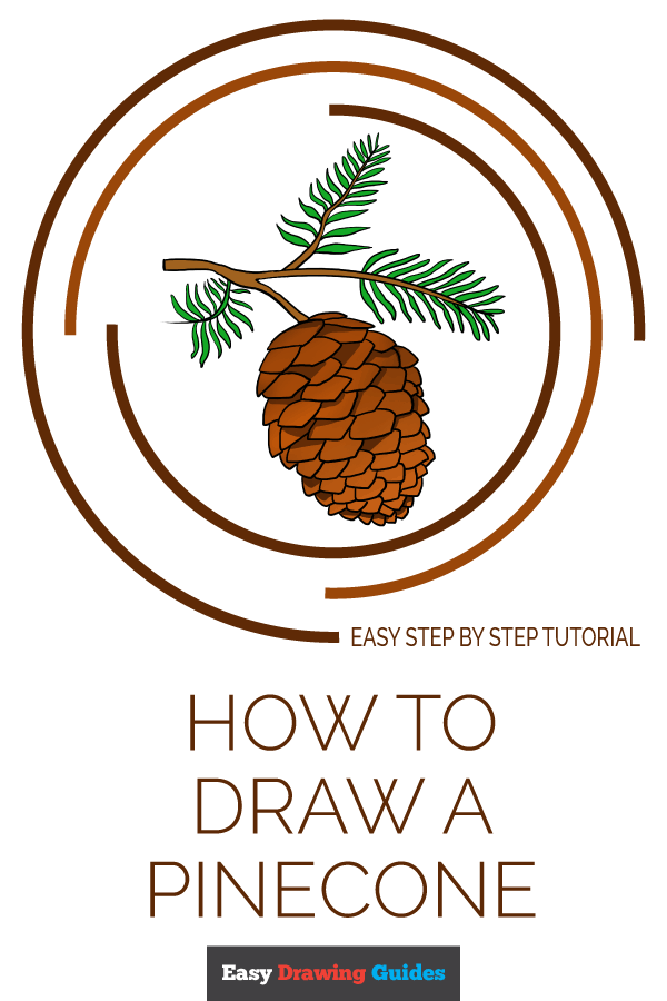 How to Draw Pinecone | Share to Pinterest