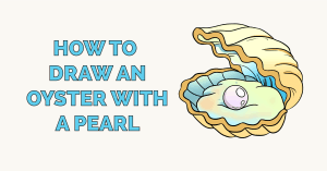 How to Draw an Oyster with a Pearl Featured Image
