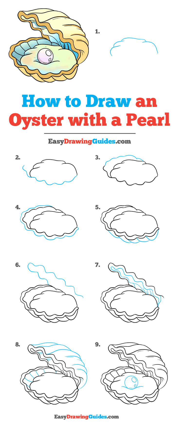 How to Draw Oyster with a Pearl