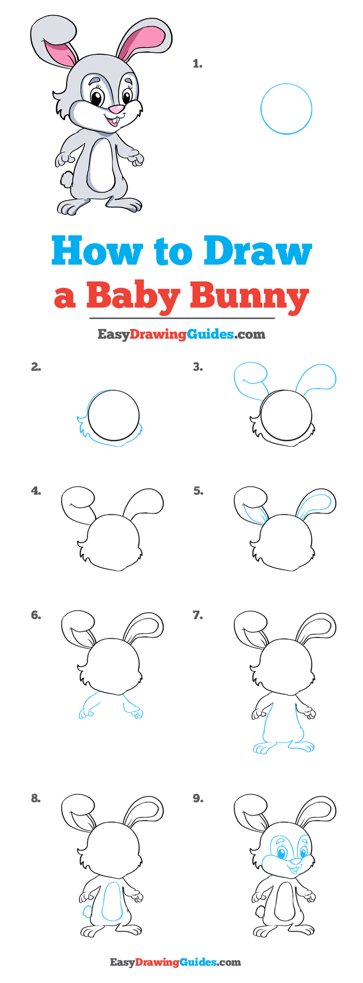 How to Draw Baby Bunny
