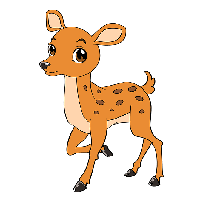 How to Draw Baby Deer: Step 10