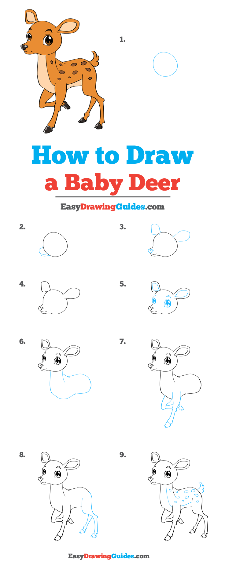 How to Draw Baby Deer