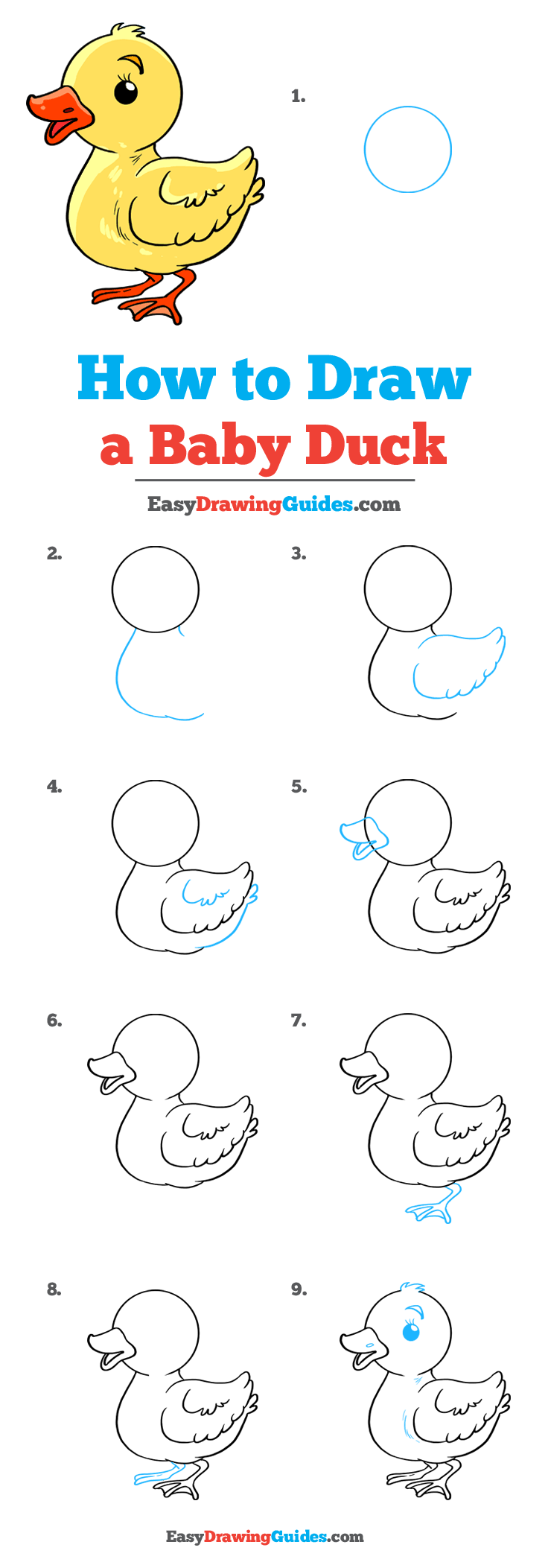 How to Draw Baby Duck