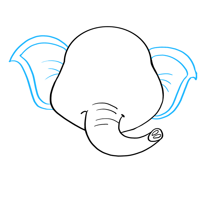 How to Draw Baby Elephant: Step 5