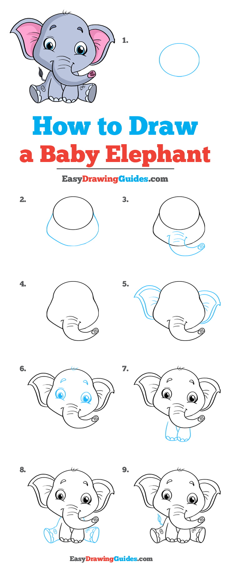 How to Draw Baby Elephant